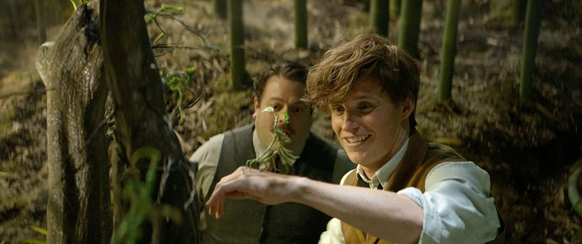 fantastic-beasts-and-where-to-find-them-53